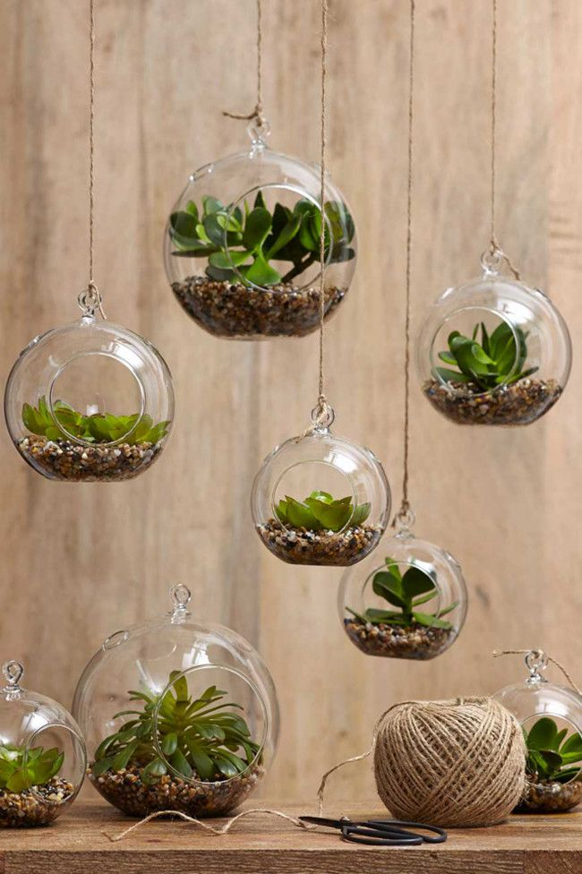 Indoor plants decoration 7 stylish ways to use indoor plants in your homeu0027s décor FVHFJBA