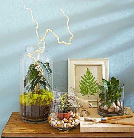 indoor plants ideas 4 ideas for stylish indoor plant displays | midwest living RNPPPRD