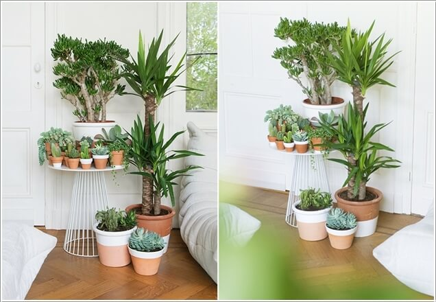 indoor plants ideas ad-amazing-ideas-for-indoor-plants-02 RIHOFHO