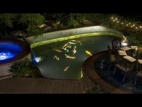 Should I Install Under Water Lights In My Koi Pond? - YouTube
