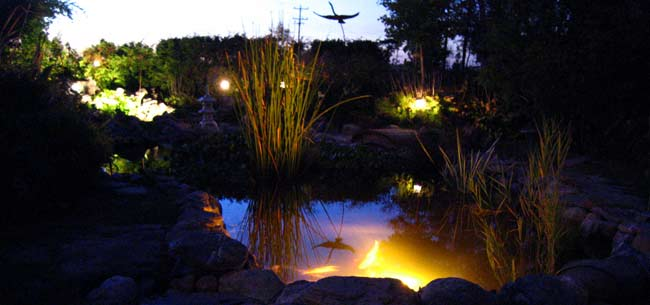 How To Design LED Landscape & Pond Lighting Systems - The Pond Experts