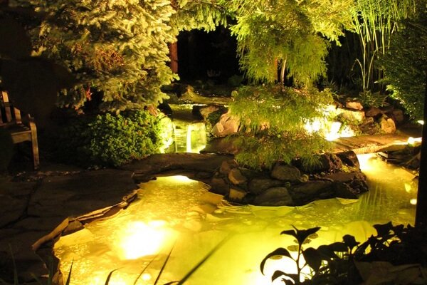 LED Lighting, Why add Pond LED Lights to my pond or water feature