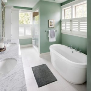 What are the BEST Window Treatments Bathrooms?