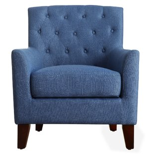 Light Blue Armchair | Wayfair
