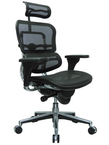 Ergohuman High Back Swivel Ergonomic Office Chair with Headrest