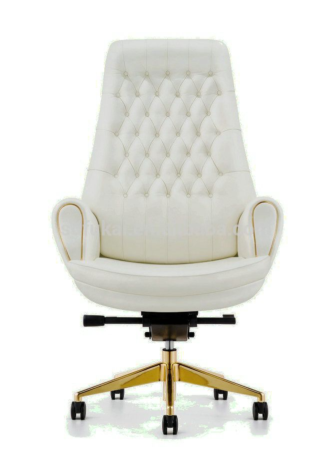 Furicco luxury classical high back office chair