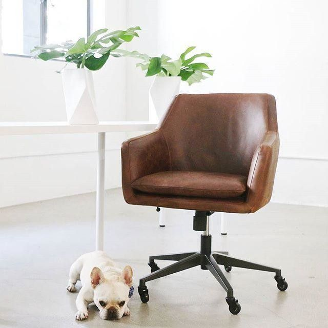 Best 25 Office Chairs Ideas On Pinterest Desk Chair Desk Home Office Chairs