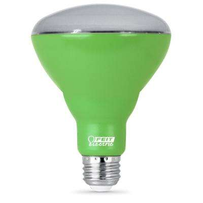 Feit Electric - Light Bulbs - Lighting - The Home Depot