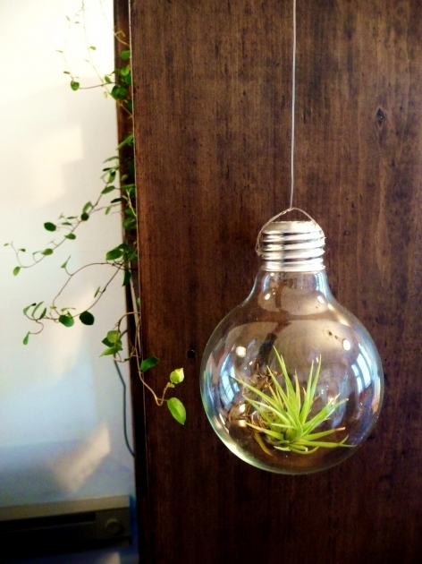 Gorgeous Stylish Plant Light Bulbs Plant Light Bulbs Ideas Lighting