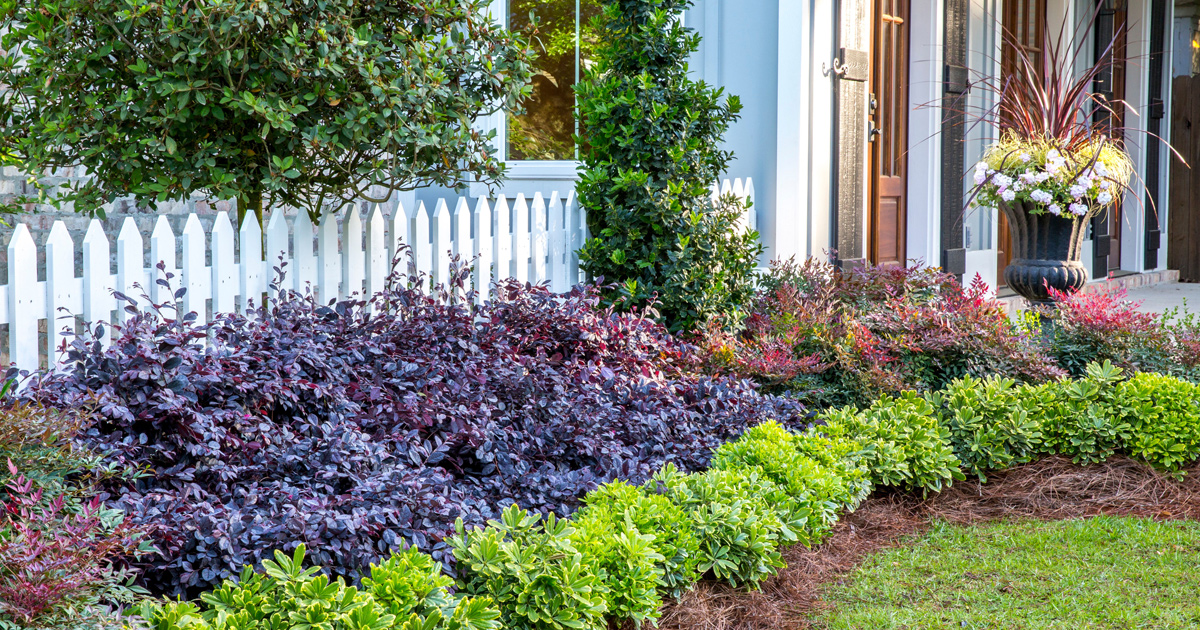 Small Garden, Big Impact: How to create depth in the landscape