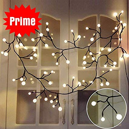 Amazon.com : YMING Globe String Lights, 8.3Ft 8 Modes 72 Led