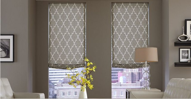 Modern Window Treatments- 3 Day Blinds- Living Room modern-living-room